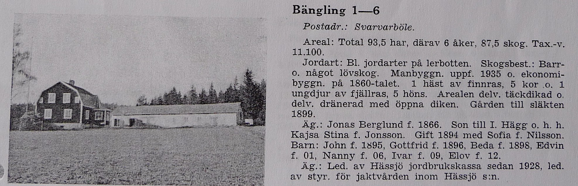 - 1866_Jonas_Berglund_Bangling